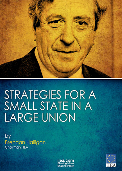 Strategies for a Small State in a Large Union