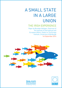 "Brendan Halligan lecture ""A Small State in a Large Union: The Irish Experience"""